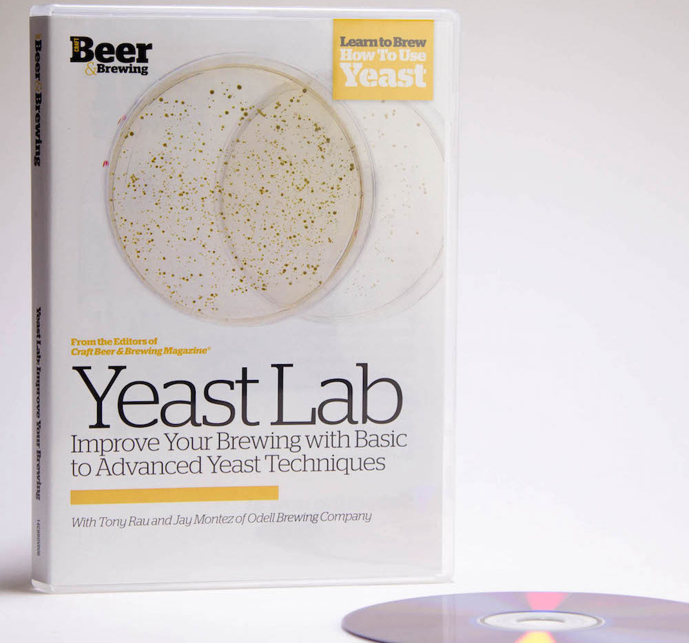 yeast lab A day in the life: exploring biomanufacturing careers author  lab: culturing yeast cells  yeast cells that are alive will appear opaque because their.